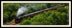 Scarborough Spa Express - Fairburn Ings (Yorkshire Pics) Tags: trees green train traintracks tracks trains railways steamengine northyorkshire westyorkshire steamtrain steamlocomotive steampowered fairburn fairburnings scarboroughspaexpress railnetwork rspbfairburnings fairburningsnaturereserve