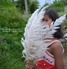 ♥ Touch Of LOVE ♥ (Sanhita Bhattacharjee/সংহিতা ভট্) Tags: autumn portrait india nikon getty kash gettyimage tripura phool nikkor1835mmlens কাশফুল nikond3100 শরৎ sanhitabhattacharjee kanchgrass