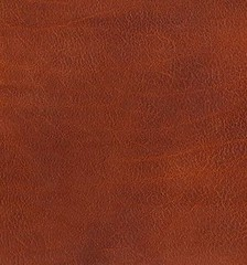 "Frye Soft Full-Grain Leather • <a style=""font-size:0.8em;"" href=""http://www.flickr.com/photos/65413117@N03/9613362069/"" target=""_blank"">View on Flickr</a>"