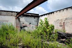 (Jukie Bot) Tags: summer abandoned walking pennsylvania empty pa wandering emptiness leftbehind floodplain delawarecounty delco belowthefall