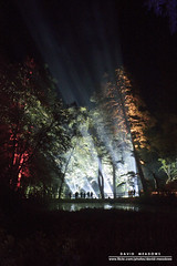 Light Show (DMeadows) Tags: wood trees light people white lake tree water silhouette night forest woodland person scotland woods perthshire event loch enchanted pitlochry faskally davidmeadows dmeadows davidameadows dameadows