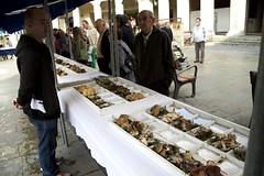 2013_Laudio_Perretxiko eguna_005 (aiaraldea.com) Tags: gastronomia onddo perretxiko ziza