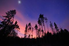 Iridium 5 flare (Mike Reva) Tags: wood sky travelling night satellite may pines flare astronomy iridium Astrometrydotnet:status=failed mygearandme vision:sunset=0771 vision:outdoor=092 vision:plant=0625 vision:sky=0973 vision:clouds=0672 vision:dark=0552 Astrometrydotnet:id=nova185824