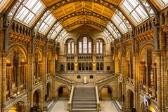 Natural History Museum (Rob Swain Photography) Tags: longexposure london museum f14 naturalhistory multipleexposure kensington 24mm 6d