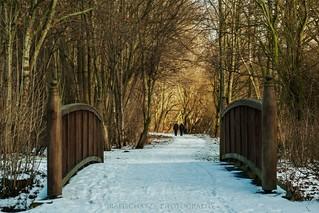 Winter in Braunschweig