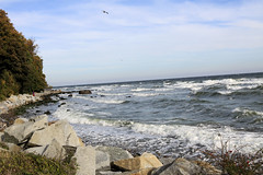 Kste - Sassnitz Insel Rgen 01 (Stefan_68) Tags: sea nature rock stone germany landscape island deutschland coast meer surf natur wave balticsea insel breakers ufer rgen landschaft stein ostsee welle kste felsen wellen mecklenburgvorpommern brandung sassnitz