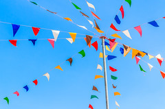 Colorful Flag Pennants | Signarama