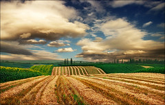 Harvested field too..:)) (Katarina 2353) Tags: summer sky cloud plant fall film nature field grass landscape photography photo nikon europe image outdoor hill serbia harvest dramatic valley fields serene agriculture srbija putdoor katarinastefanovic katarina2353 serbiainspired