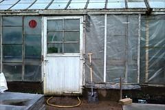 L1007653_v1 (Sigfrid Lundberg) Tags: door greenhouse dorr drr zm vxthus fotosondag fotosndag csonnart1550 zeiss50mmf15csonnarzm fs140413