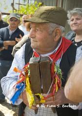 Scafati (SA), 2014, Festa della Madonna dei Bagni. (Fiore S. Barbato) Tags: italy campania madonna festa santo salerno olio benedetto bagni piuma fedeli scafati unzione carrettone