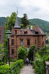 Heidelberg, Germany - 110 (www.bazpics.com) Tags: city trip bridge holiday castle germany de deutschland urlaub may visit mai heidelberg baden burg bruecke badenwürttemberg 2015 badenwuettemberg wuettemberg