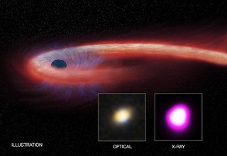 A supermassive black hole spent more than a decade consuming a star