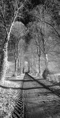 A North Yorkshire village. (johnhjic) Tags: johnhjic nikon d90 ir helperby northyorkshire tree trees path track road sky landscape greatbritain blackwhite black white bw lane england english
