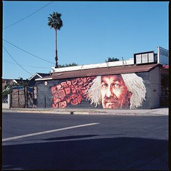 East Hollywood (ADMurr) Tags: la east hollywood cab063 mural palm wires triangle foreground shadow tarmac hasselblad 80mm zeiss 6x6 square format full frame kodak ektar