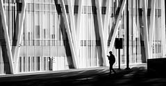Reading (elgunto) Tags: barcelona forum diagonalmar telefonica torre building museublau shadow light highcontrast people silhouette blackwhite bw zeiss 135mm jena sonnar manuallense