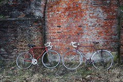 Standing (mieverschooten) Tags: cycling antwerp photography fortvanborsbeek fort borsbeek bricks wall vintage retro coursfiets cours bycicles fiets colourful colours camera