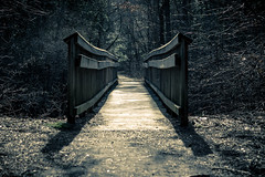 Bridge to Nowhere (jayoaK) Tags: park bridge forest canon woods state dreary t3i parvin