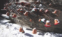 pot art (pellegrinoaddict) Tags: winter snow plant canada art ceramic branches decoration pot qubeccity placeroyale ruesaintpierre quebec
