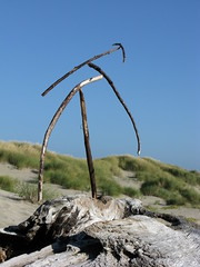Sunset Wee Dancing Tree (Shiftwood Sculpture) Tags: travel sculpture plants art beach nature animals river landscape photography mobiles northwest driftwood