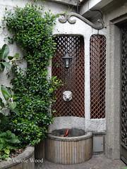 Nomentana 761 (Via) - Aurora 02 (Fontaines de Rome) Tags: rome roma fountain brunnen fuente via aurora font fountains fontana fontaine rom fuentes bron 761 fontane fontaines nomentana vianomentana vianomentana761 fontanadellaurora