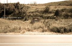 CARTOLINE TERRITORIALI (giacomo-b   + l i g h t) Tags: way landscape strada viaggio puglia anas cartolina abbandono manutenzione chieuti