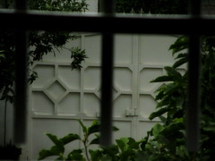 Gate Bar ! (حــسامـم !) Tags: trees black tree green bars gate lock prison rod behind captive درخت سبز اسیر درختان پشت زندان قفل سیاهی دروازه میله