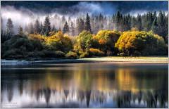 Luci autunnali (LesPauly) Tags: autumn trees italy lake alberi lago lights nikon colours paolo autunno colori d800 udine landscaper fusine tarvisio fan