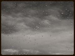 Rain (Zelda Wynn) Tags: wet weather blackwhite skies scenic auckland raindrops artgalleryofnsw cloudscape rainclouds troposphere inspiredbyalfredstieglitz zeldawynnphotography