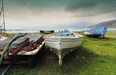 ottobre....spiaggia del balin ... (miriam ulivi) Tags: nuvole mare barche erba carretto spiaggia sestrilevante baiadellefavole retidapesca nikoncoolpixp500