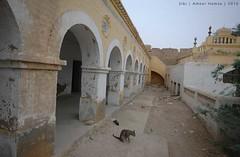 Sibi old building, Balochistan (Ameer Hamza) Tags: cat framed single historical historicalsite historicalplacesinbalochistan