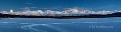 s 664A4318 Blue Moon (Ed Boudreau) Tags: winter moon snow mountains landscape winterscape wintermoon alaskamountains alaskawinter alaskalandscape denalirange