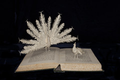 The Courtship of Animals (From Within a Book...) Tags: sculpture bird art birds altered paper paperart book artwork peacock peahen peacocks