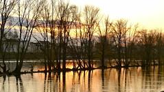 Coucher de soleil sur la Loire - Orlans - Loiret - Centre - France (vanaspati1) Tags: sunset sun france color river de la soleil couleurs centre coucher rivire ciel sur loire fleuve orlans loiret skie vanaspati1