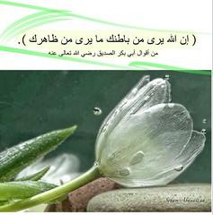 Abu bakr saying (nooralkalemat) Tags: islam religion mohammed       hadeeth           abubakralsiddiq