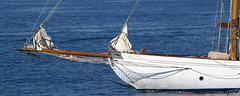 Barca32 (photoalfiero) Tags: ocean sea water boat barco sailing ship barcos liguria sails streetphotography nave sail sailboats vela navegar marinas veliero tirreno barchedepoca barcheavela tallschip lesignoredelmare lestradeparlanoimuriurlano