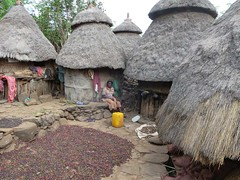 Coffee Beans Drying (D-Stanley) Tags: coffee ethiopia konso