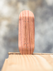 Fonky Fingers - Rosewood (MartinBeckmann) Tags: portrait macro berlin tech skateboarding fingers olympus nike fisheye panasonic deck sample blackriver 60mm shelter sb fingerboard objektiv em10 yellowood gh3 gh4 fonky gm1 berlinwood gx7 ytrucks