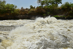 The raging rapids of Folla Falls in the Nimule National Park in South Sudan. (tommcshanephotography) Tags: africa travel war southsudan refugees un unitednations wtn rivernile neur humanitariancrises tommcshanephotography levwood levisonwood walkthenile