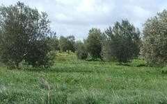 44 Olive Road, Bowmans SA