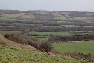 Salt Hill (distance) across the Meon Valley