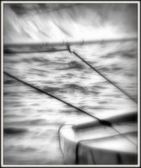 Anglų lietuvių žodynas. Žodis sailfish reiškia n zool. buržuvė lietuviškai.