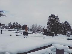 #armenian #graveyard #snow #winter #yerevan #evn (ani_smbati) Tags: evn graveyard armenian snow yerevan winter