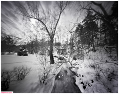 Stony creek field (DelioTO) Tags: 4x5 autaut adoxchs100 blackwhite d23 desaturated february landscape natparks ontario pinhole rural trails winter woods