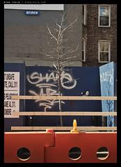 _5022488 copy (mingthein) Tags: street new york city nyc urban usa four lumix availablelight g olympus x panasonic micro ming 43 omd urbanscape thirds pz vario m43 onn mft em5 thein photohorologer 14423556 micro43 microfourthirds mingtheincom 14423556x