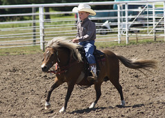 Young cowboy (Sam Stukel) Tags: cowboy pony rodeo horseback littlecowboy kidsrodeo