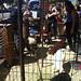 Four Barrel petting zoo