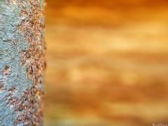 Foreground. (RichTatum) Tags: street urban macro texture washington alley warm rich pipe bellingham iphone tatum blogrodent richtatum iphoneography fergusoptical
