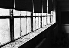 drawn shades (ariel is . . .) Tags: old school windows blackandwhite bw abandoned