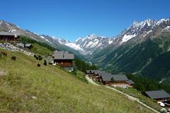 Lauchernalp mit Blick zur Lötschenlücke (Alfesto) Tags: schweiz switzerland wallis wanderung lauchernalp blatten wiler lötschental fafleralp lötschenlücke