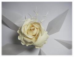 Rose (HER.Cha.) Tags: france flower fleur rose brooch silk corsage fleuriste silkflower バラ artificielle コサージュ コサージュbroochfrance